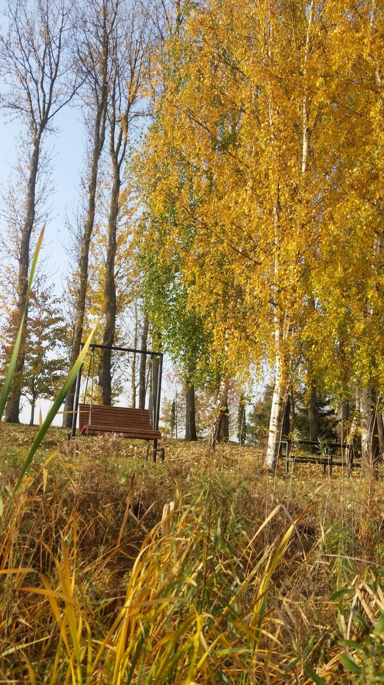 nature-photography-ed558815b250f7ee10923d04f929b487-V